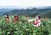 """浙江""""十四五"""":开启高水平全面建设社会主义现代化新征程的行动纲领"""
