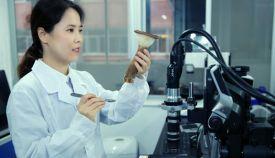 中國熱科院海南培訓食用菌栽培人才
