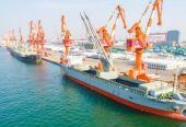 """临港港务集团与德信钢铁合作开发""""天津-印尼""""班轮航线"""