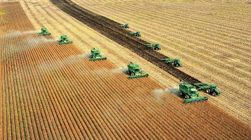 """2020年,黑龙江省粮食产量达7541万吨,实现""""十七连丰""""。黑龙江省发展改革委 供图"""