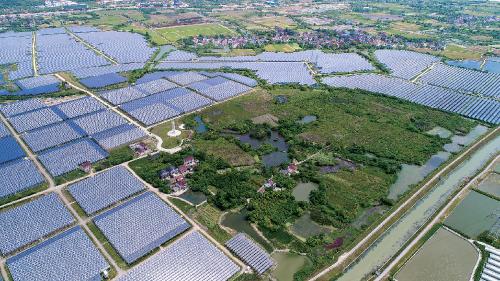 中节能长兴70MW 光伏智慧农业综合示范项目。