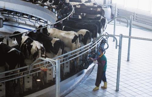 目前发行的农村产业融合发展专项债券,主要用于种养殖园区及农业产业园区建设。中国经济导报记者苗露/摄