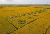 吉林·长春2021年中国农民丰收节硕果累累