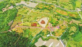 山东新泰:打造革命老区高质量发展新格局