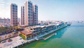 广东顺德高新区优质营商环境吸引战兴产业和高端制造业落地